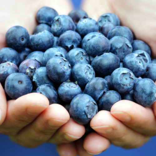 Seven Energy-Boosting Foods every Person Should Eat
