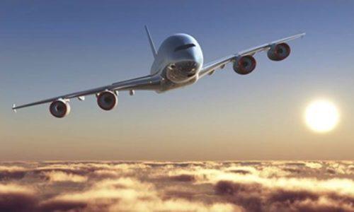 Plane Makes Emergency Landing After Hitting a Bird