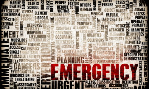 5 Great Foods You Should Pack in Case of an Emergency